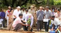 Planting a hybrid jack fruit sapling on world Environment Day